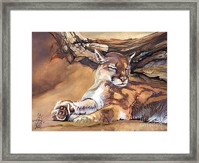 Catnap Framed Print by J W Baker