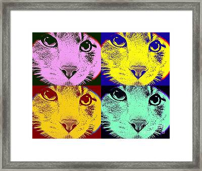 Cats 4 Game By Jasna Gopic Framed Print by Jasna Gopic