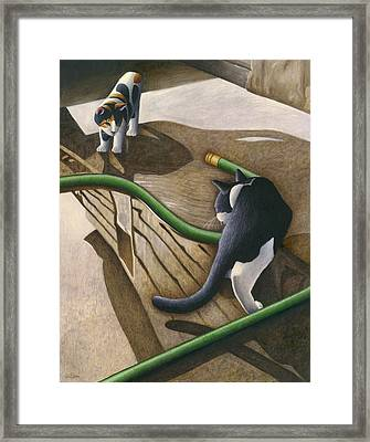 Cats And Garden Hose Framed Print by Carol Wilson