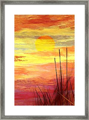 Cattails Framed Print by Wally Boggus
