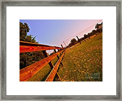 Cattle Country Framed Print by Chuck Taylor