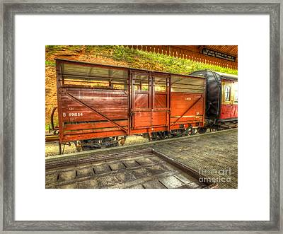 Cattle Wagon Framed Print by Catchavista