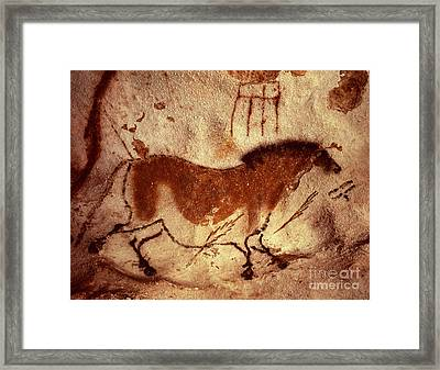 Cave Painting Of A Horse Framed Print by Unknown