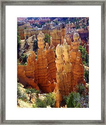 Cedar Breaks 1 Framed Print by Marty Koch