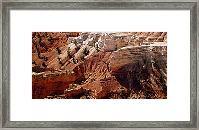 Cedar Breaks 5 Framed Print by Marty Koch