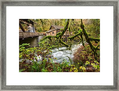Cedar Creek Mill Mosses Framed Print by Jamie Pham