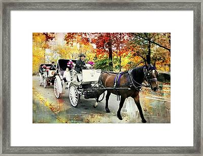 Central Park Carriage Framed Print by Diana Angstadt