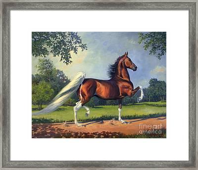Ch. Racing Stripe Framed Print by Jeanne Newton Schoborg