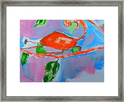 Chameleon And Fly Framed Print by Samuel Zylstra