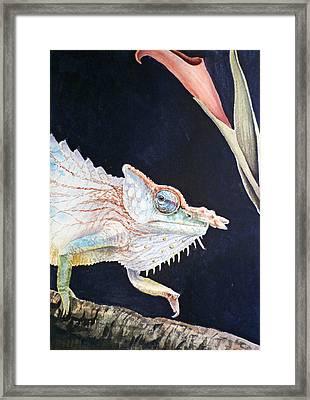 Chameleon Framed Print by Irina Sztukowski