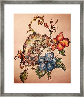 Chameleon Of Many Colors Framed Print by Stacey Scruggs