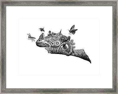 Chameleon On A Branch Framed Print by Uladzislau Shamela