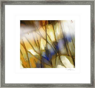 Change Of The Seasons Framed Print by Bob Salo