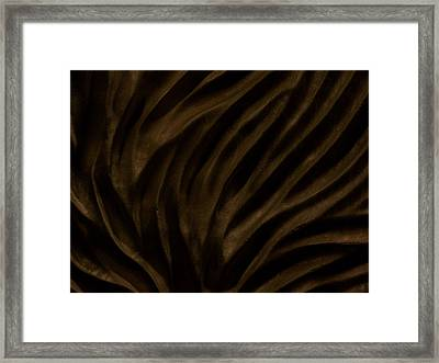 Changing Currents -- Detail Framed Print by Evan Leutzinger