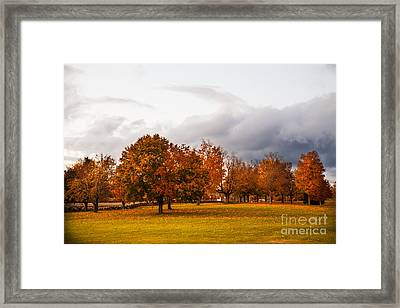 Changing  Framed Print by Sue OConnor