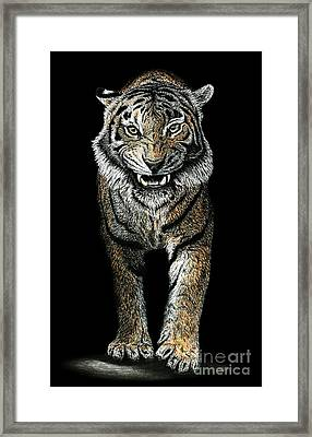 Charcoal Tiger Framed Print by Chris Trudeau