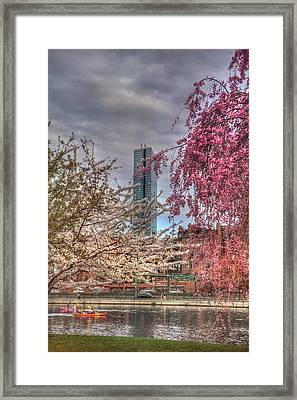 Charles River Esplanade - Boston Framed Print by Joann Vitali