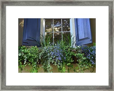 Charleston Flower Box 3 Framed Print by Allen Beatty