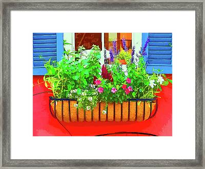 Charleston Flower Box 6 Framed Print by Allen Beatty