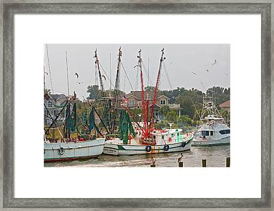 Charleston Sc 3 Framed Print by Joel P Black
