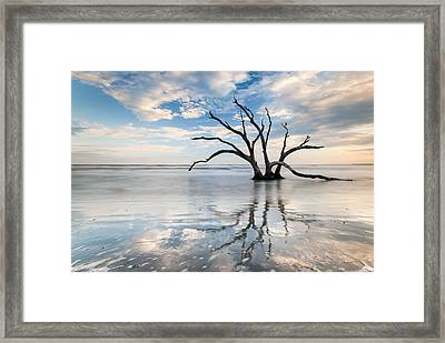 Charleston Tree In Ocean Surf Framed Print by Mark VanDyke