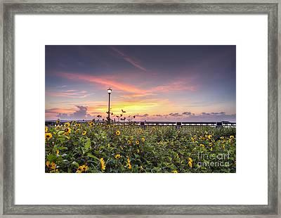 Charleston Waterfront Park Sunrise Framed Print by Dustin K Ryan