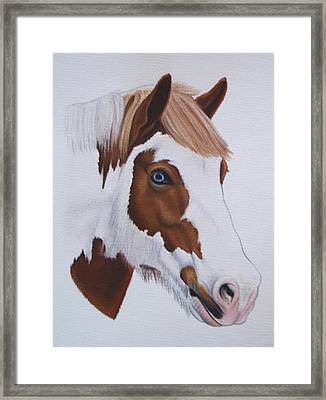 Charlie Framed Print by Lucy Deane