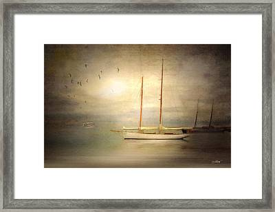 Charlotte Framed Print by Michael Petrizzo