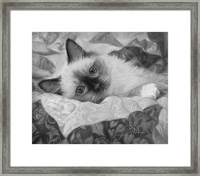 Charming - Black And White Framed Print by Lucie Bilodeau