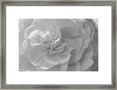 Cheerful - Black And White Framed Print by Lucie Bilodeau