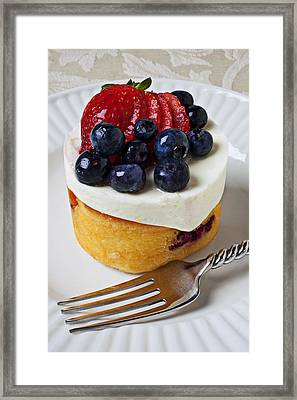 Cheese Cream Cake With Fruit Framed Print by Garry Gay