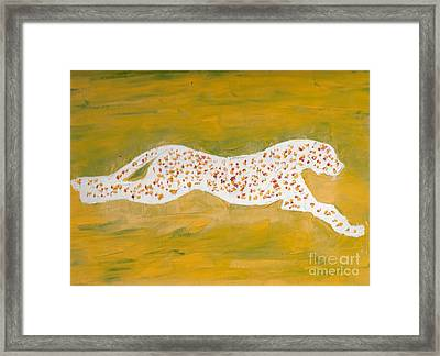 Cheetah A Framed Print by Richard W Linford