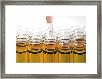 Chemistry Is Everything Framed Print by Michael Ledray