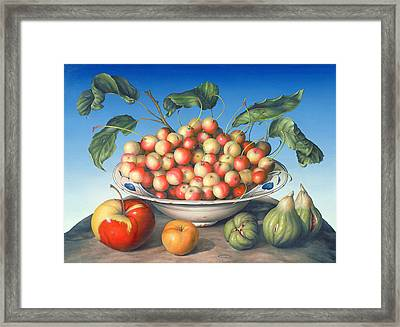 Cherries In Delft Bowl With Red And Yellow Apple Framed Print by Amelia Kleiser