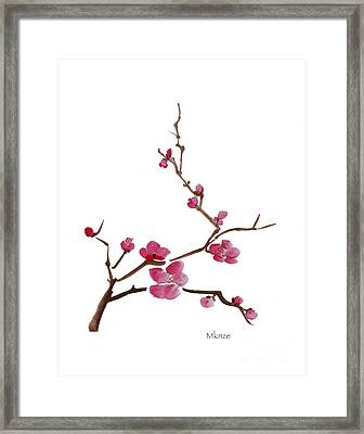 Cherry Blossoms 1 Framed Print by McKenzie Leopold