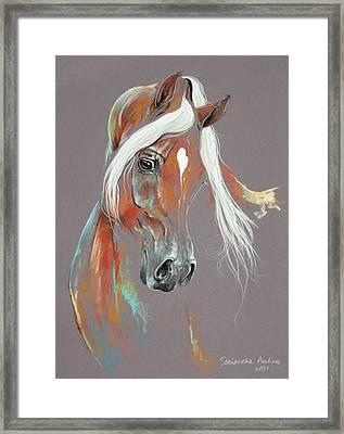 Chestnut Arabian Horse Framed Print by Paulina Stasikowska