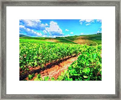 Chianti Vineyard In Tuscany Framed Print by Dominic Piperata