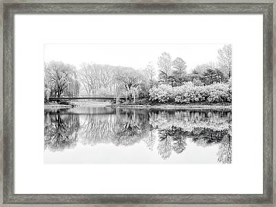Chicago Botanic Garden In Black And White Framed Print by Julie Palencia
