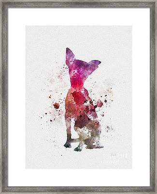 Chihuahua Framed Print by Rebecca Jenkins