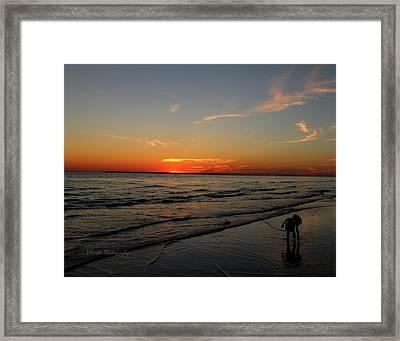 Child At Sunset Framed Print by Mark Nester