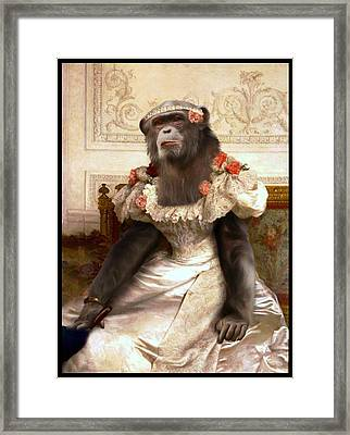 Chimp In Gown  Framed Print by Gravityx9  Designs