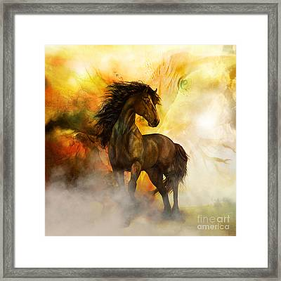 Chitto Black Spirit Horse Framed Print by Shanina Conway