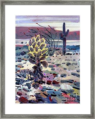 Cholla Saguargo And Ocotillo Framed Print by Donald Maier