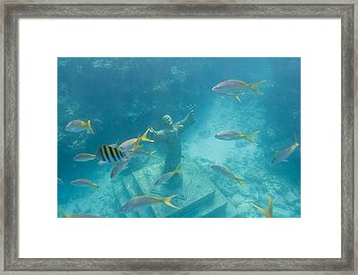 Christ Of The Deep Statue In A Coral Framed Print by Mike Theiss