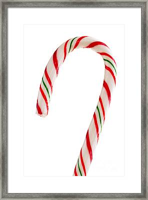 Christmas Candy Cane Framed Print by Elena Elisseeva