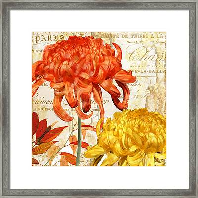 Chrysanthemes II Framed Print by Mindy Sommers
