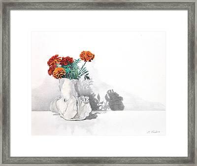 Chrysanthemum Still Life Framed Print by Phyllis Tarlow