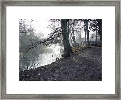 Churchyard Trees Framed Print by Rod Johnson