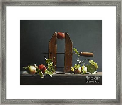 Cider  Framed Print by Larry Preston