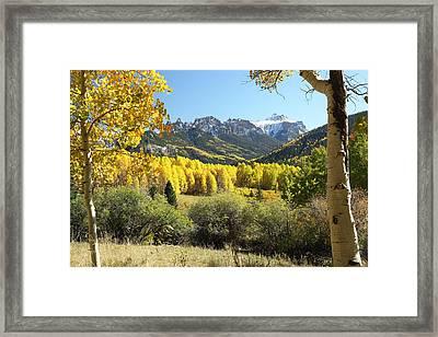 Cimarron Gold Framed Print by Eric Glaser